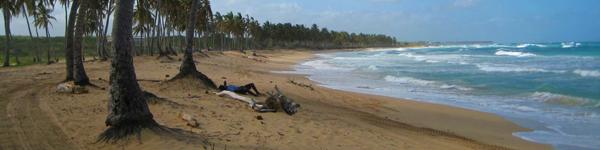 Puerto Plata - Dominikánská Republika - Dovolená a Zájezdy
